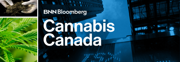 Cannabis Canada: BNN Bloomberg Launches Unprecedented Editorial Series on the Legalization of Marijuana, Beginning Tomorrow